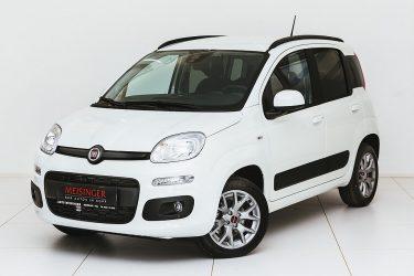 Fiat Panda 1,2 70 Lounge bei Auto Meisinger in