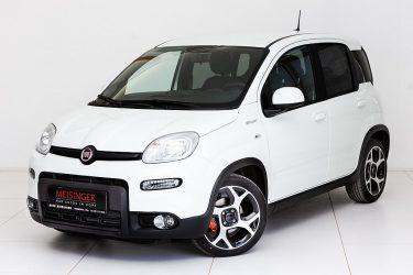Fiat Panda 4×2 FireFly Hybrid 70 Sport bei Auto Meisinger in