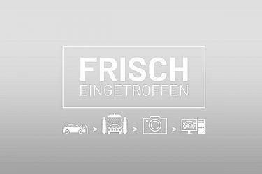 Fiat 500 FireFly Hybrid 70 Google bei Auto Meisinger in